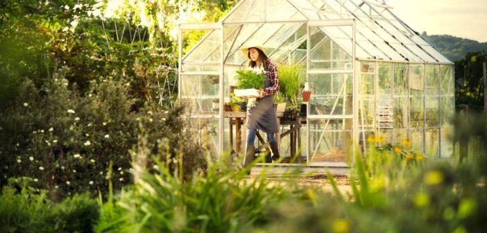 Opsat drivhus med kvinde